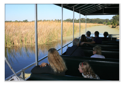 Plantation Boat Tour