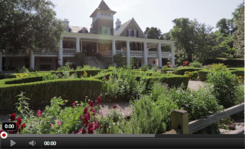 Videos Of Magnolia Plantation And Gardens Charleston Sc