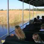 Ricefield Boat Tour